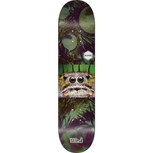BLIND MCENTIRE BUGGERS DECK-8.0 r7